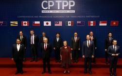 """Đối tác """"tỷ USD"""" của Việt Nam trong CPTPP"""