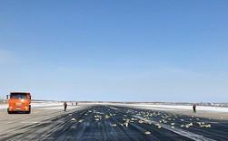 Bị tung cửa, máy bay Nga rải 10 tấn vàng và kim cương suốt 26 km