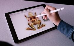 Apple ra mắt iPad mới dành riêng cho giáo dục, màn hình 9,7 inch, hỗ trợ Apple Pencil, giá từ 329 USD, giảm 30 USD nếu dùng cho các tổ chức giáo dục