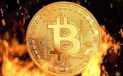 Giá Bitcoin Cash tụt quá sâu, Bitmain ra lời kêu gọi thợ đào