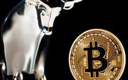 Tăng 15% trong 1 tuần, giá Bitcoin tái lập mốc 9.000 USD