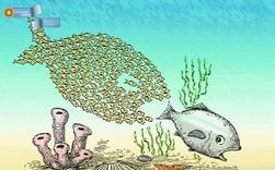 """Cạnh tranh của thời công nghệ: Chuyển từ """"cá lớn nuốt cá bé"""" thành """"cá nhanh nuốt cá chậm"""""""