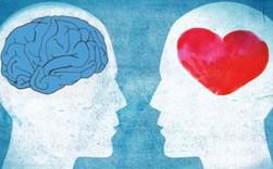 Không phải IQ mà EQ mới chính là tương lai của trí tuệ nhân tạo