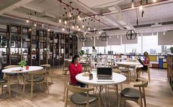 91% người sử dụng không gian làm việc chung đều dưới 35 tuổi