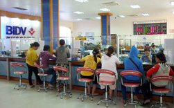 MBS: Kinh tế Việt Nam vẫn được kỳ vọng tiếp tục tăng trưởng tốt trong các năm tới