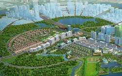 Bất động sản xanh đang là xu hướng của thị trường địa ốc Tp.HCM?