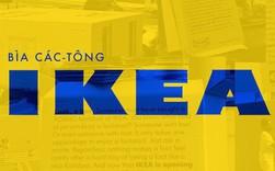 Đây là cách IKEA xây dựng đế chế nội thất trên nền những tấm bìa các-tông
