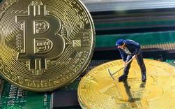 Kinh tế qua hoạt hình: Bitcoin chờ đợi điều gì ở năm tới?