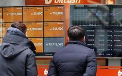 Giữa cơn bão màu đỏ, nhà đầu tư bitcoin ngậm ngùi nhìn về một thời đã xa