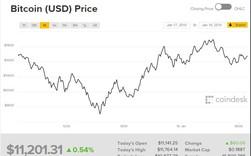 Giá bitcoin phục hồi sau cú sốc xuống dưới 10.000 USD