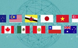 Chặng đường thăng trầm của Hiệp định CPTPP mà Việt Nam vừa thông qua
