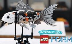 Cuối cùng thì LEGO đã chịu làm đồ chơi dành cho người lớn