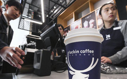 Mới thành lập được 1 năm lại bán rẻ hơn tới 1/3, startup cà phê này khẳng định họ sắp 'hạ gục' được Starbucks chỉ nhờ 2 chữ TIỆN LỢI