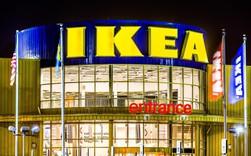 IKEA đích thị là nỗi khiếp sợ của bất kỳ hãng nội thất nào, và đây là lý do!