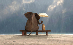 """Không có thứ lòng tốt mang tên """"nghĩa vụ, hiển nhiên"""": Hãy mài sắc lòng tốt của bạn nếu không muốn bị người khác lợi dụng"""