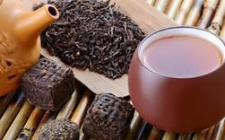 """Lạ lùng nghề thử trà trong khách sạn 5 sao tại Hồng Kông: Tiết lộ của chuyên gia sẽ khiến bạn phải thốt lên """"Thưởng trà cũng là cả một nghệ thuật!"""""""