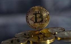 Nam Phi có tỷ lệ người sở hữu tiền ảo cao nhất thế giới