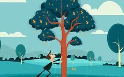 Tuổi trẻ ba KHÔNG: Không tiền tài, không kinh nghiệm, không tích lũy; nhưng lại là thời gian giàu có nhất vì có thứ này trong tay