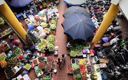 """Góc nhìn của các tổ chức quốc tế về kinh tế Việt Nam giữa những """"cơn gió thổi ngược"""" như thế nào?"""