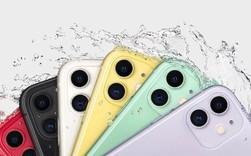 So sánh iPhone 11 với các điện thoại Android cao cấp nhất