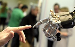 5 phẩm chất cần có để không bị robot cướp việc làm