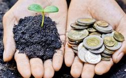 Bạn muốn có tiền để mua nhà, tậu xe, đầu tư trong năm Canh Tý? Hãy đọc 5 quyển sách hay về quản lý tài chính cá nhân trước đã!