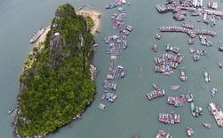 Một liên danh đề xuất làm dự án hơn 470 ha ở Vân Đồn