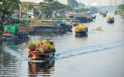 Ảnh: Thuyền chở đầy ắp hoa nối đuôi nhau cập bến Bình Đông, chợ hoa trên bến dưới thuyền rộn ràng sắc xuân ngày cận Tết
