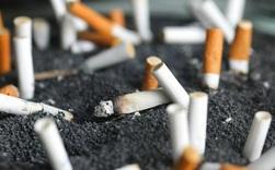 Người hút thuốc lá có tỷ lệ biến chứng nghiêm trọng cao gấp 14 lần khi mắc Covid-19