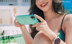Xiaomi Mi 11 Lite 5G mở đặt trước, tặng quà hơn 4 triệu
