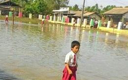 Biến đổi khí hậu là nguyên nhân của hơn 7.000 thảm họa thiên nhiên trong vòng 20 năm