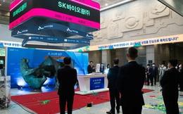 Một loạt triệu phú bất ngờ xuất hiện nhờ làm nhân viên tại tập đoàn 'chaebol' của Hàn Quốc