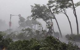 Từ nay đến cuối năm 2020, khả năng còn 4-6 cơn bão và áp thấp nhiệt đới hình thành trên Biển Đông