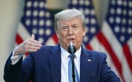 Cách lôi kéo cử tri đặc biệt của Trump ở giai đoạn nước rút trước Ngày Bầu cử