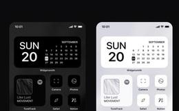 Một designer đã kiếm được 100.000 USD chỉ trong 6 ngày, bằng cách bán các icon tùy chỉnh trên iOS 14