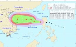 Bão số 8 giật cấp 10, cách quần đảo Hoàng Sa khoảng 770km