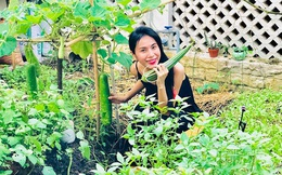 Cuộc sống giản đơn của vợ chồng Công Vinh - Thuỷ Tiên: Cùng nhau chăm sóc vườn rau sạch, tự tay thu hoạch củ quả, ăn không hết đem tặng hàng xóm