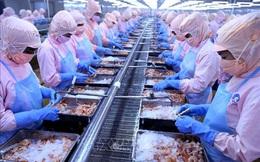 Minh Phú sẽ kháng cáo quyết định của Mỹ liên quan đến sai phạm xuất khẩu tôm nguồn gốc Ấn Độ