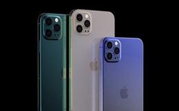 Chuyên gia công nghệ đánh giá iPhone 12 và 12 Pro: Pin kém, camera 'như mọi khi', 5G và cảm biến Lidar đều 'viển vông'