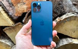 Báo cáo của Appota: iPhone là thương hiệu smartphone được nhiều người Việt sử dụng nhất