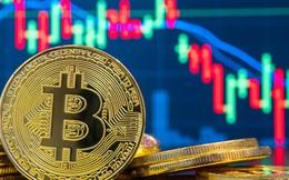 """Bloomberg: Bitcoin sắp chạm 14.000 USD, tín đồ khẳng định """"lần này sẽ khác"""""""