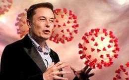 Elon Musk lọt vào danh sách theo dõi đặc biệt của Nhà Trắng về vấn đề COVID-19