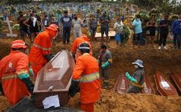 Thảm họa trong một thành phố ở Brazil, nơi COVID-19 không còn vật chủ để lây vì 44 - 66% dân số đều đã nhiễm