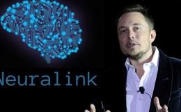 Neuralink của Elon Musk: Đâu là khoa học, đâu là giả tưởng?