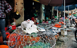 """Chuyện lần đầu kể của người phụ nữ... """"lỡ"""" làm nghề giết mổ động vật và những ánh mắt vô hồn đến ám ảnh tại khu xóm nhỏ chuyên thịt chó ở Sài Gòn"""