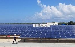 Sang Việt Nam làm pin mặt trời, nhiều tập đoàn Mỹ - Trung thu về cả chục nghìn tỷ đồng mỗi năm