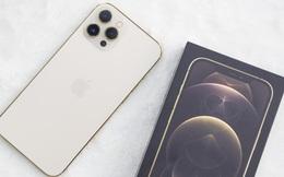 iPhone 12 Pro Max đầu tiên về Việt Nam, giá 53 triệu đồng