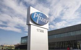 Pfizer tiêm chủng vaccine COVID-19 thí điểm tại 4 bang của Mỹ