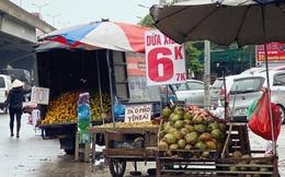 Tiểu thương hé lộ bí mật bất ngờ phía sau những trái dừa xiêm 6k tràn lan khắp phố