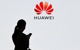 Bị Mỹ cấm vận, Huawei tính xây nhà máy sản xuất chíp riêng
